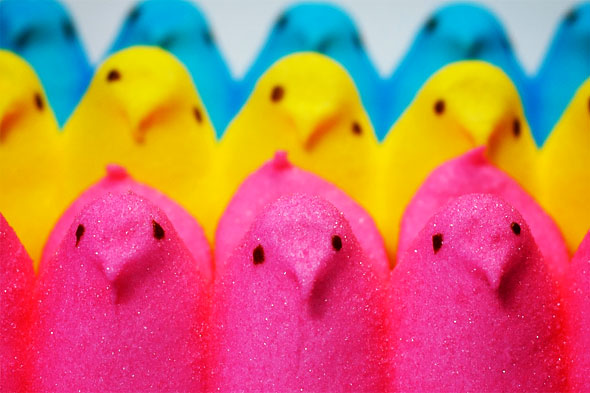 peeps easter candy desktop wallpaper - photo #22